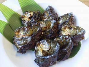 むくり鮒(フナ) | 株式会社 山形丸魚